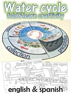 Water cycle craft  $1.20 cycl craft, watercycle, life science, water cycle crafts, science water cycle, teacher, assessment, teaching water cycle, paper plates