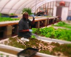 This weekend Brent, our shipping and receiving manager, went to visit Charles Hendrix of Abundant Harvest Aquaponics. What follows is an email Brent sent to the Aquaponic Source team about that visit. Enjoy!