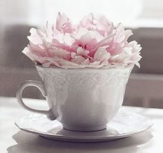 White tea cup with peony