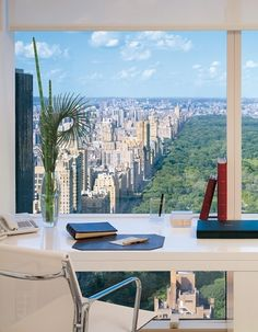 working place, office spaces, window, the office, dream, the view, new york city, central park, home offices