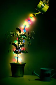 #digital #Photography #art #color