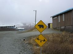 playground, play outside, funny signs, bears, funny road signs, warning signs, children, kids, place