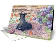 christmas cards, garden card, pet readi, holiday cards, greyhound dog, dog help, greyhound stuff, card 1033759, whippet