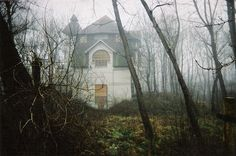 Scary as it looks. But I want a house at the middle of the woods