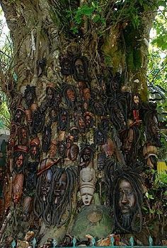 Bob Marley Tree at Dunn's River Falls