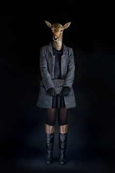 Segundas Pieles, Photos Imagine Wild Animals in Fashionable Clothes animals, dress anim, segunda piel, anim dress, anthropomorph, art, miguel vallina, second skin, photographi