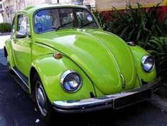 green bug, vw bugs, appl green, colors, first car, apples, limes, chartreus, volkswagen