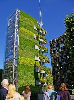 wow | vertical garden