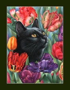Cats by Irina Garmashova