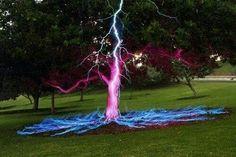 Long exposure photo of lightening bolt hitting tree