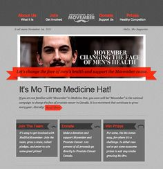 MedHatMovember - Campaign Monitor
