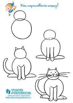 Hoe een kat vergiftigen