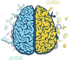 Human Brain Infographic by Mohamad Abdallah, via Behance