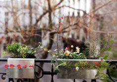 Jardin urbain on pinterest 35 pins for Jardin urbain