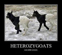 biology humor...hahahaha