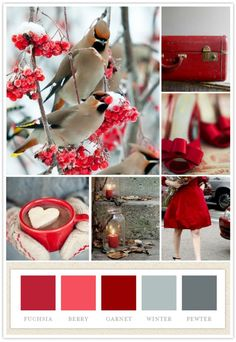 #winter #wedding #palette #red is the color!
