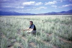 Tall Wheatgrass located near Fillmore, is examined by SCS employee Gerald Johnson.  Photo taken May 27, 1965.  Photographer Dale Weber.