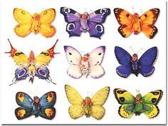 Anne Geddes Butterflies