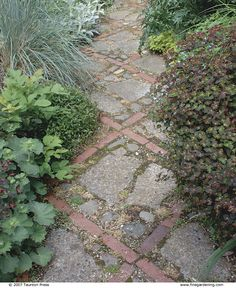 Diagonals add interest to a paving design. Tom Vetter used recycled brick to outline a crisscross pattern and combined it with stone and broken concrete. This walkway runs through a narrow garden along the side of his house in Portland, Oregon.