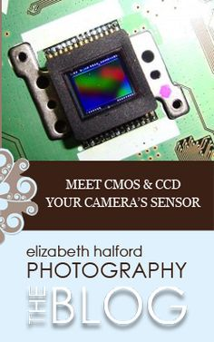 An introduction to your camera's sensor