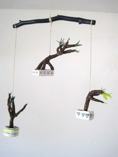 bonsai mobile