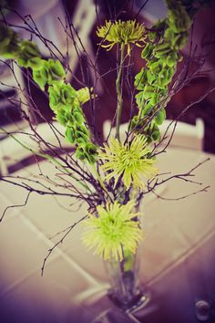 DIY Centerpiece: Tall vase, lime green spider mums, birch branches and bells of Ireland.