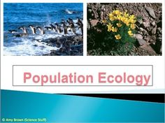 Topic:  Population Ecology.  56-slide PowerPoint with Notes for Teacher and Student.