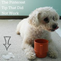 The Pinterest Tip That Did Not Work