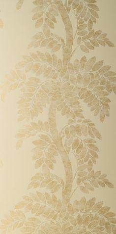 thibaut wisteria