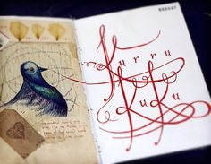 Lettering for Weronika ~ Fernando Forero #journal #calligraphy