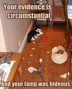 Your evidence is circumstantial