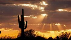 Arizona: Home <3