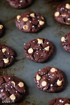 Salted Dark Chocolate Peanut Butter Cookies | gimmesomeoven.com