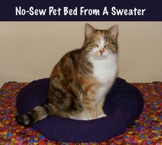 sweater, dog bed, sew pet, dog cat, pet beds, diynosewpetbedfromasweat, cat stuff, diy pet