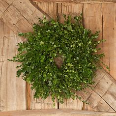 Boxwood wreath, hang from top of ladder shelf