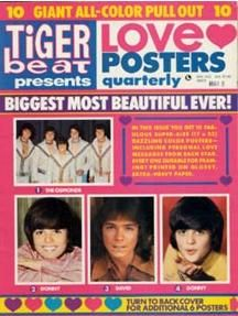 Tiger Beat beats, free poster, beat childhoodmemori, tigers, magazin, tiger beat