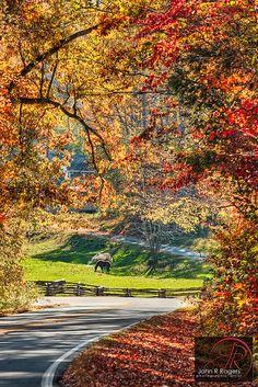Back roads of North Carolina in autumn