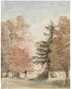 Study of trees in a park, perhaps Helmingham Park, John Constable, 1805