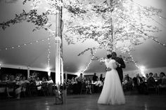 Bistro lights and uplights on trees made this white-themed tent sparkle.  Photo © Daniel Aaron Sprague.
