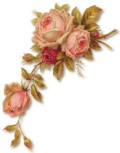 decoupag paper, pink roses, 05 png, rosen bilder, paperwhimsi