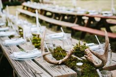 antlers + moss table decor