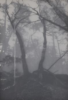 Aokigahara The Perfect Place 1, 34x49 cm, mixed media, 2011