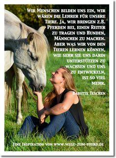 geburtstagswünsche für pferdefreunde