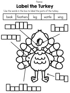 *** FREEBIE *** Label a Turkey. Part of the Thanksgiving Label It Packet. Also includes label a Boy Pilgrim, Girl Pilgrim, and Native Girl!