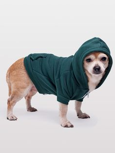 Someone give me a dog to dress up! (American Apparel Flex Fleece Dog Zip Hoodie)