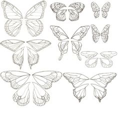 butterfli wing, embroidery patterns, draw fairy wings, butterfly templates, butterfly wings, embroidery animal patterns, fairy wings template, wing tattoos, butterfly art lesson