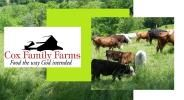 The Cox Family Farms - Reserve a Beef Share