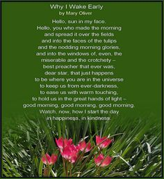 A poem by Mary Oliver