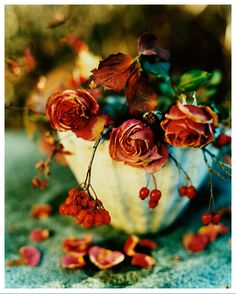 dining rooms, rose, color palettes, autumn, colors, belle, burgundy, prettybeauti flower, bowls