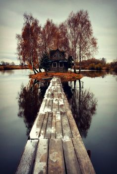 cabin, lake houses, cottag, little houses, dream homes, path, bridg, island living, place